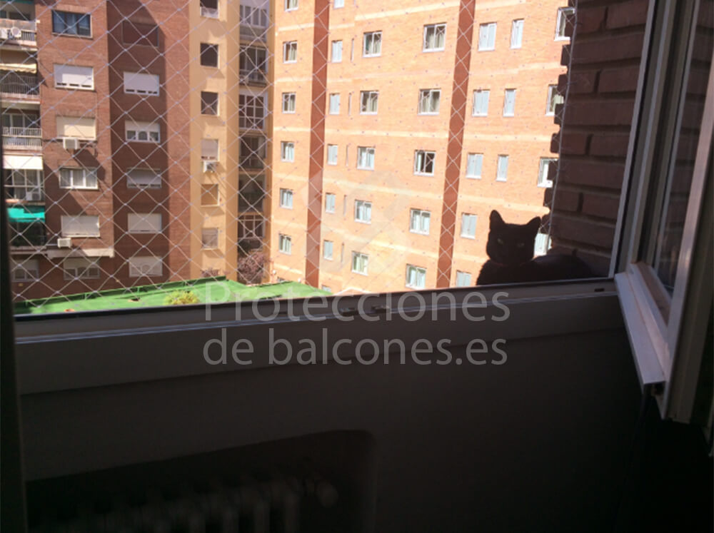 https://proteccionesdebalcones.es/wp-content/uploads/2018/07/descarga-14.jpg
